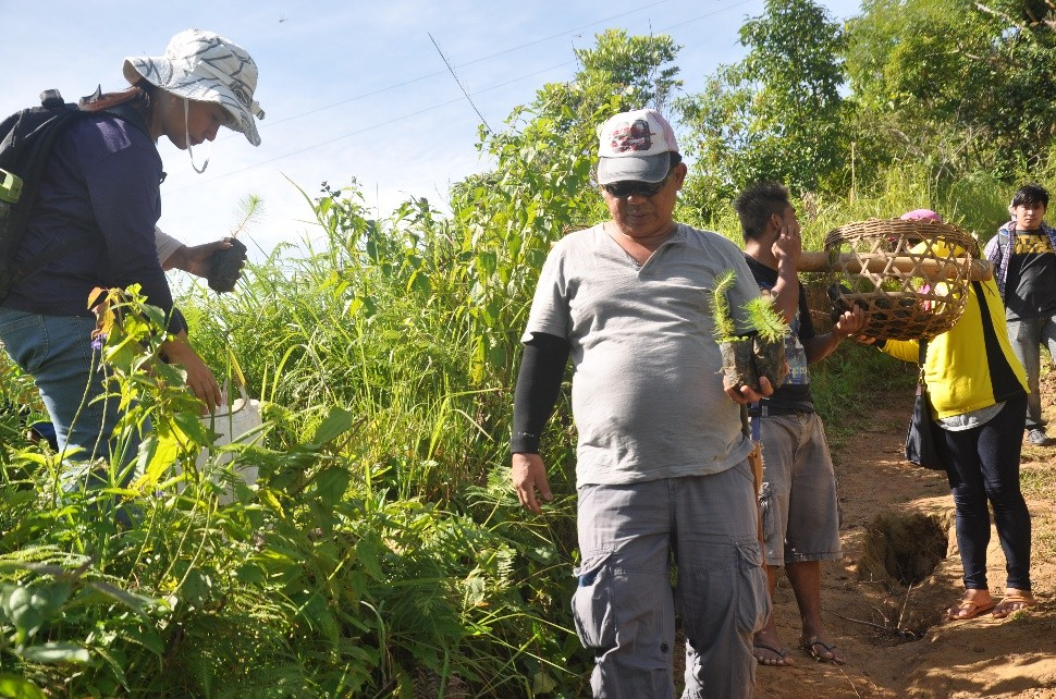 Mayor Samuel B. Subagan Jr leading the employees of the Municipal Local Government Unit of Suyo in the tree planting